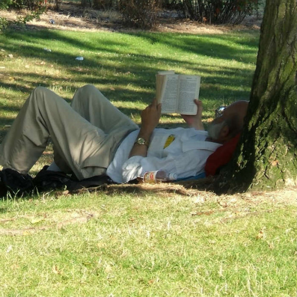 bav-man-reading-book-outdoors